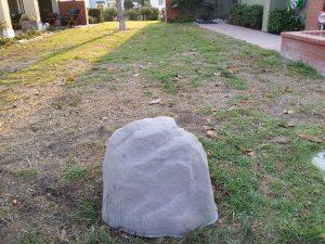 Look - a Rock!