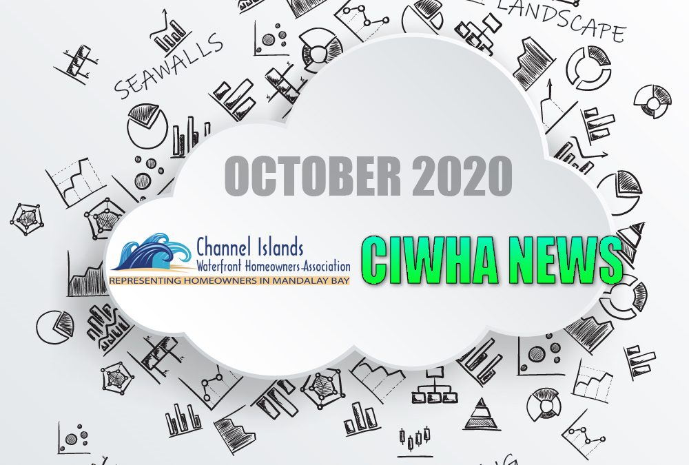October 2020 – Be in the know!